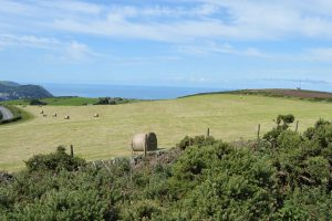 East-Lyn-House-Exmoor-countisbury-haybales